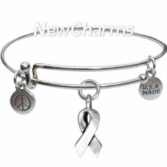 Bangle Bracelet with JT209 Silver Awareness Ribbon