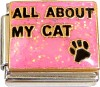 All About My Cat on Pink Italian Charm