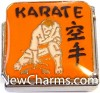 CT9486 Karate On Orange Italian Charm