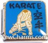 CT9487 Karate On Blue Italian Charm