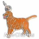JR110 Golden Retreiver ORing Charm