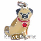 JR150 Pug Tan ORing Charm