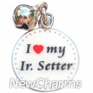 JR153 I Love My Irish Setter ORing Charm