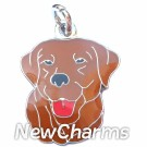 JR160 Chocolate Lab O-Ring Charm