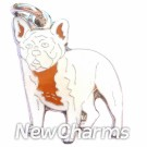 JR164 French Bulldog ORing Charm