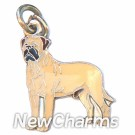 JR176 Mastiff ORing Charm