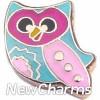 H1551 Colorful Owl Floating Locket Charm