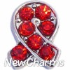 H7695 Ribbon Wtih Red Stones Floating Locket Charm