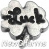 H9110 Luck Four Leaf Clover Floating Locket Charm