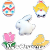 CSL116 Hoppy Easter Charm Set for Floating Lockets