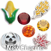 CSL162 Autumn Season Fall Leaves Charm Set for Floating Lockets